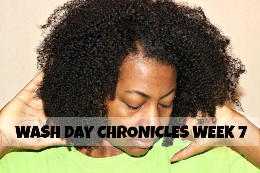 wash day fine natural hair