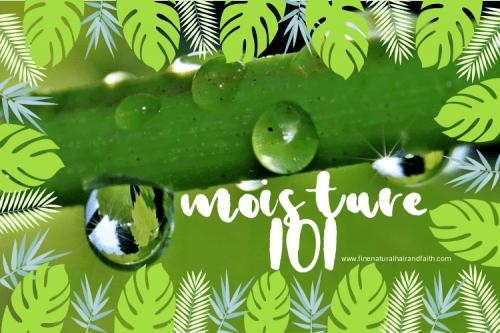 moisture101