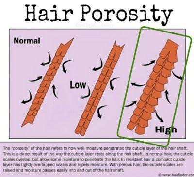moisturizing high porosity hair