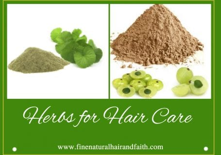 Amla and Brahmi herbs for hair care