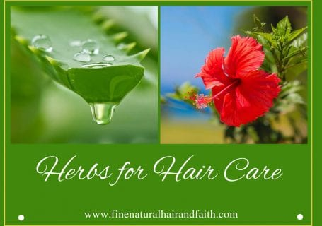 hibiscus and Aloe Vera herbs for hair care